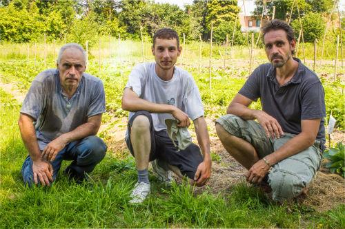 Depuis décembre dernier, Constant, Marc et Gabriel se sont lancés le maraîchage. ©Quentin Noirfalisse